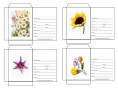 Flower Seed Packets #6  There are several to choose from at this site. Also, there are printable garden journal templates and some project tutorials. Go to www.gardensandcrafts.com