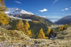La piana di Eita in veste autunnale - Vista sulla piana di Eita in alta Val Grosina nel pieno delle sfumature autunnali.