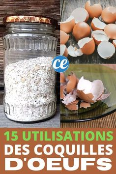 Carbonate De Calcium, Garden Planters, Garden Projects, Compost, Agriculture, Good To Know, Gardening Tips, Plus Jamais, Good Things