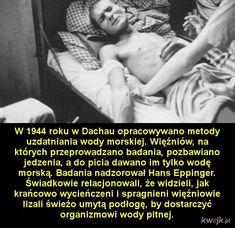 Najbardziej przerażające nazistowskie eksperymenty medyczne Art History, Maine, Humor, Memes, Fun, Historia, World War, Poland, History