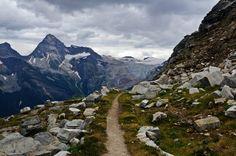 Trail on Abbott Ridge, Glacier National Park, BC, Canada.
