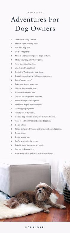 29 Bucket List Adventures to Bring You and Your Dog Closer Together