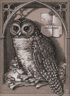 "Madeline von Foerster, Drawing for ""Spotted Owl Cabinet"",2008,9 x 12 in,23 x 30.5 cm,Black and white ink on gray paper"