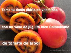 Tomate de árbol, el zumo es muy rico! #SomosTurismo #Colombia