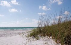 30A - One of The 10 Most Relaxing Coastal Drives In The U.S.