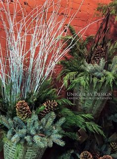 CONTAINER & LANDSCAPE DESIGN - EXTERIOR STYLING & SEASONAL DISPLAYS