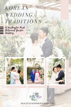 Fully Alive Photography — | Photojournalist Blog Botanical Gardens Wedding, Garden Wedding, Korean Wedding Traditions, Washington Park, Arizona Wedding, Photojournalism, Beautiful Images, Destination Wedding, Fully Alive