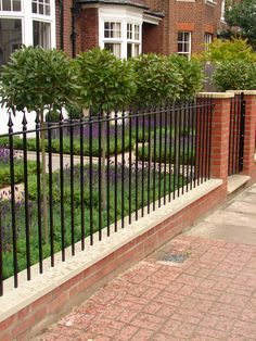 Front garden with railings