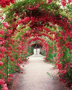 - Elena Bautista - English garden Pathways - 39 Canopies Plants Ideas Make Beautiful Garden. Beautiful Flowers Garden, Beautiful Gardens, Beautiful Beautiful, Garden Paths, Garden Landscaping, Garden Tips, English Garden Design, Garden Canopy, Garden Cottage