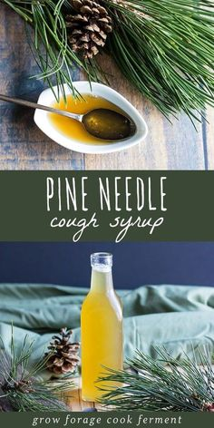 Natural Remedies Make this pine needle cough syrup with foraged pine needles to help soothe a sore throat and ease coughs. Recipe is from the book Healing Herbal Infusions. Natural Health Remedies, Natural Cures, Herbal Remedies, Natural Healing, Natural Oil, Cold Remedies, Natural Foods, Holistic Remedies, Healing Herbs