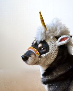 MYTHICAL: A Crocheted Unicorn Mask For Dogs