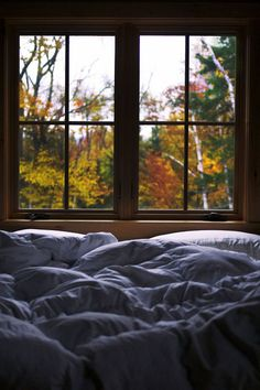 Cozy fall morning