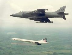 Vintage Aircrafts Concorde: A Hawker Siddeley Sea Harrier Aircraft: Escorting Concorde to pay her homage. Air Force Aircraft, Navy Aircraft, Fighter Aircraft, Fighter Jets, Concorde, Military Jets, Military Aircraft, Tupolev Tu 144, Rolls Royce