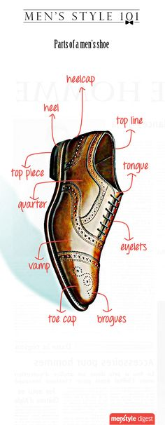 The anatomy of a shoe.