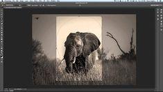 Adobe MAX: Hidden Gems in Photoshop