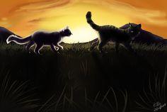 'Til Kingdom Come: Jayfeather and Half Moon