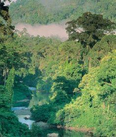 Le Cameroun est un pays aux diverses facettes, ces paysages sont tellement changeants en fonction des régions.Le tour du Cameroun en photos par Camernews