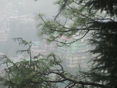 from dharamkot