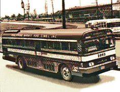 pr1973 Buses, Timeline, Philippines, Evolution, Rabbit, Photo And Video, World, Bunny, Rabbits
