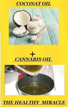 Cannabis and Coconut Oil- The Healthy Miracle Against Cancer ! #Healthylife #healthlifestyle