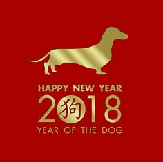 Dachshund 'Year of the Dog' 2018.