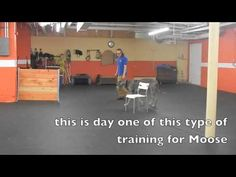Working a young dog on baseline training with low level remote collar training. our Rhode Island dog training center trains all dogs, all ag...