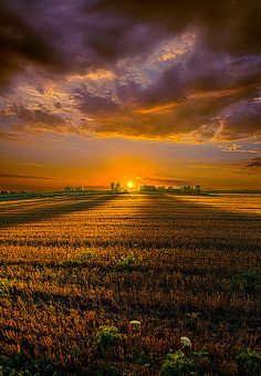 """Good Morning""  From the Horizon series by Phil Koch, a 2 year photograpahic exploration of the Wisconsin  landscape."