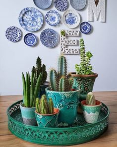 Shop online for all your Cactus and Succulent must haves. Our selection of decorative planters will help you add plenty of personality to your space. Cactus Centerpiece, Centerpiece Decorations, Vertical Wall Planters, Decorative Planters, Succulent Gardening, Cacti And Succulents, House Plants Decor, Plant Decor, Dubai Miracle Garden