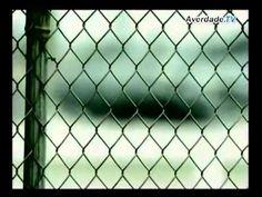 A Verdade - O Filme - DVD 1 - Parte 1 -  2_4 - Os Extraterrestres - As E...