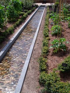 long straight and contemporary garden stream | adamchristopherdesign.co.uk