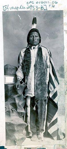 Wagon Man - Arikara - circa 1880