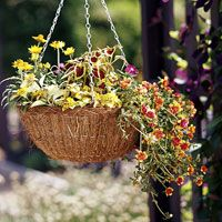 How to Make a Perfect Hanging Basket. I just inherited a few from my mom. Yay for more planting space!