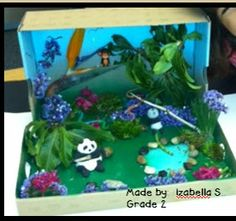 Second grade book report projects