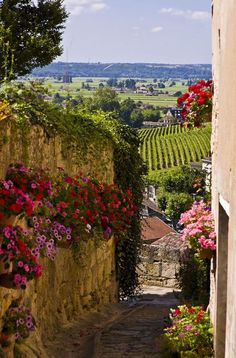 Saint Emilion in Bordeaux region, France Places Around The World, The Places Youll Go, Places To See, Beautiful World, Beautiful Places, Beautiful Pictures, Beautiful Gorgeous, Belle France, Saint Emilion
