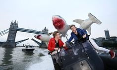 Jedward and Sharknado