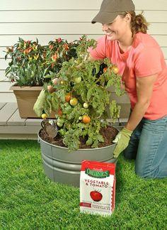Easy Gardener Inc Jobes Organics Rose Flowering Shrub