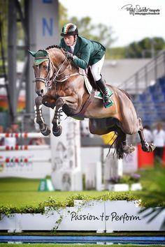 The Horse Lifestyle : Photo