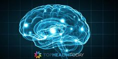 Brain Growth vs Brain Development