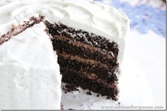 Black Magic Chocolate Cake Made With Condensed Tomato Soup