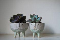 Atelier Stella: Handmade pottery with succulents Ceramic Clay, Ceramic Pottery, Pot Plante, Cactus Y Suculentas, Decoration, Planter Pots, Succulent Planters, Succulent Containers, Small Succulents