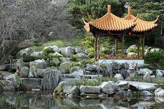 Sydney's Chinese Garden of friendship Chinese Plants, Chinese Garden, Gazebo, Pergola, Glow, Outdoor Structures, Modern Gardens, Japanese Gardens, Places