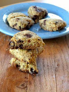 Paleo Chocolate Chip Scones (low-carb, nut-free) | Recipe | Scones ...