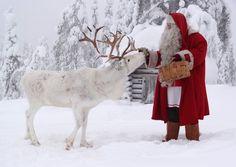 Joulupukki ruokkimassa poroa Ritavaaran päällä Pellossa Länsi-Lapissa