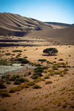 Sossusvlei - Namibia ( monsieur rico)