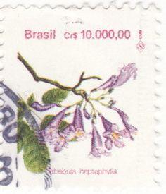 Selo: Brazilian Flora. Tabebuia heptaphylla (Brasil) (Flora) Mi:BR 2506,Yt:BR 2096,RHM:BR 693