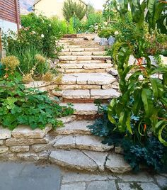 My sister made this amazing retaining wall/stairway with old concrete chunks she got for free! Doesn't it look amazing!! #diy cassity