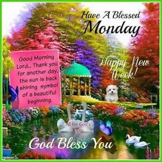 Have a Blessed Monday! monday days of the week week monday greeting monday blessings monday quote good morning monday friends and family monday