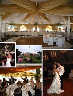 Mendocino wedding consultant and evemt planning concerning your Wedding in Mendocino Tent Wedding, Wedding Venues, Mendocino Coast, Chairs For Rent, Wedding Consultant, Local Events, Site Design, Wedding Supplies, Northern California