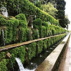 #villadeste #garden #favoritefountainanywhere