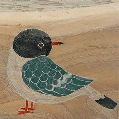 little gull ~Valeriane Leblond